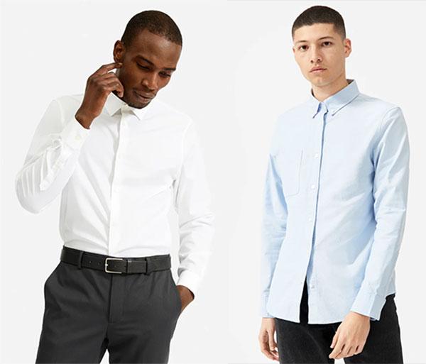 Everlane Dress Shirts